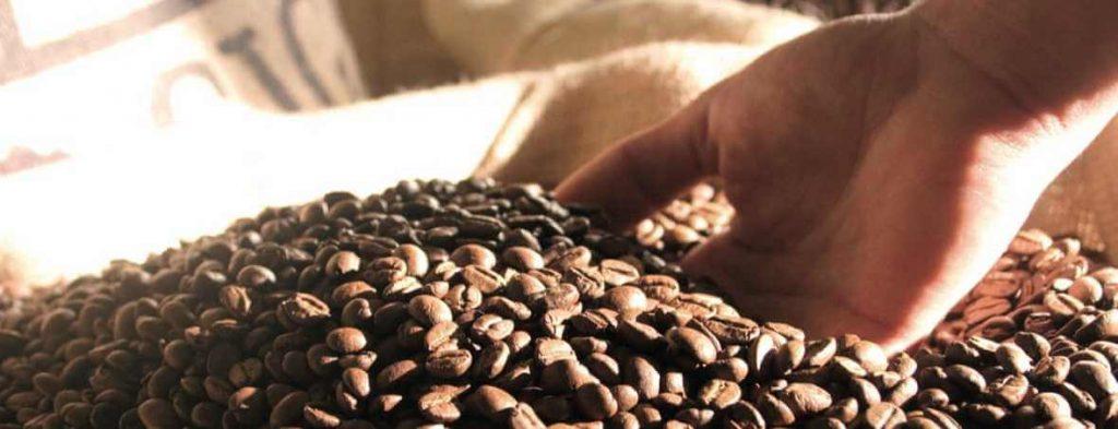GRANOS DE CAFÉ-CAFÉLAB